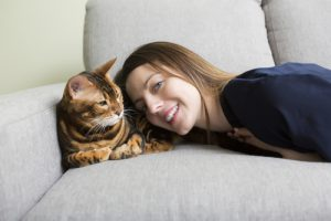 Odstranění nečistot od kočičích chlupů