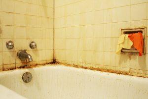 plísně v koupelnách