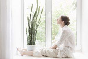 jak vyčistit okna ve výšce
