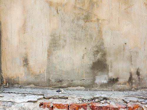 Plísně se často objevují vprádelnách. Odstranění plísní Praha