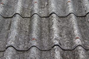 plísně a děravá střecha