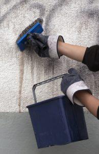 čistá zed bez graffiti