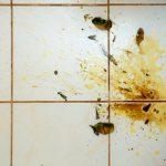 Odstraňování odolné špíny z podlah