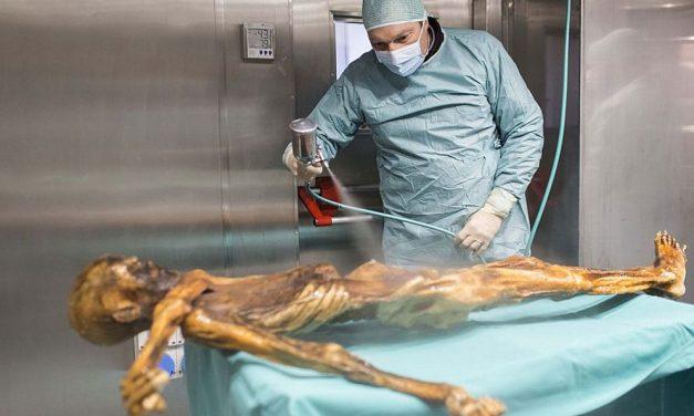 Ledový muž Ötzi jedl vyváženě, ale hodně tučně