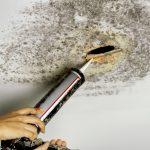 Jak odstranit nebezpečné plísně