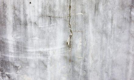 Plísně za tapetami v nevytápěné místnosti nejsou nic neobvyklého. Zbavení se plísní v Praze.