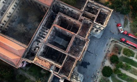 Fragments Found in the Ashes of Brazil's National Museum Bring Hope That Some Treasures Survived