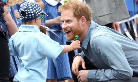 This Kid Could Not Get Enough of Prince Harry's Beard