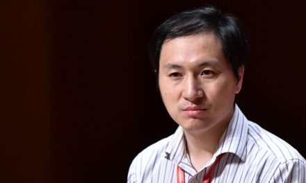 'I Feel Proud.' Chinese Scientist Addresses Controversial Gene-Edited Babies