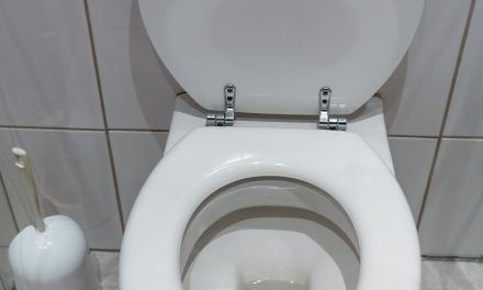 World Toilet Day Highlights Sanitation Crisis That Potentially Puts Millions of Lives at Risk