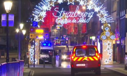 At Least 3 People Were Killed in an Attack Near a French Christmas Market