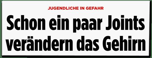 Bild.de bringt veraltetes Zeug in Umlauf
