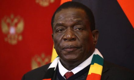 Zimbabwe's President Calls Violence by Security Forces 'Unacceptable'