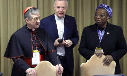 Prominent Nigerian Nun Challenges Vatican on Transparency at Summit