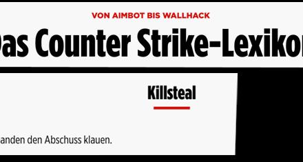 Bild.de klaut Counter-Strike-Glossar