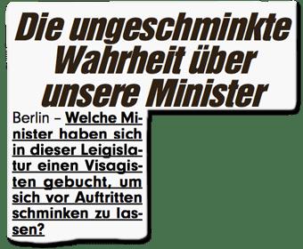 """AfD-Anfrage landet ungeschminkt in """"Bild"""""""