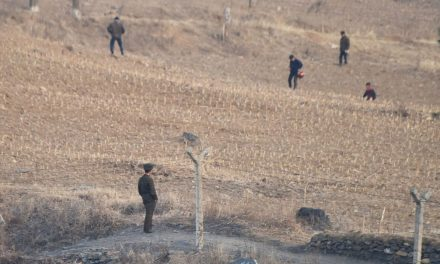 North Korea Says It's Suffering Worst Drought In Nearly 40 Years