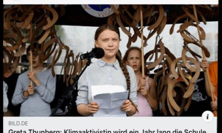 Bild.de lässt Greta Thunberg ein ganzes Jahr schwänzen