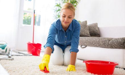 Špinavý koberec není konec světa. Koberce čištění Brno
