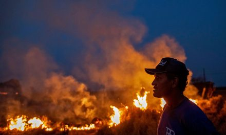 Brazil Begins Deploying Troops to Fight Amazon Rainforest Fires