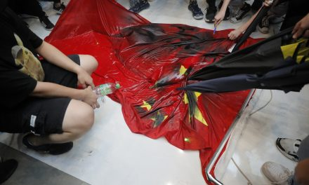 Hong Kong Protesters Trample Chinese Flag, Vandalize Subway Station