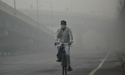Air Pollution Turned India's Capital Into a 'Gas Chamber.' It's Part of a Global Trend Killing 7 Million Prematurely Each Year