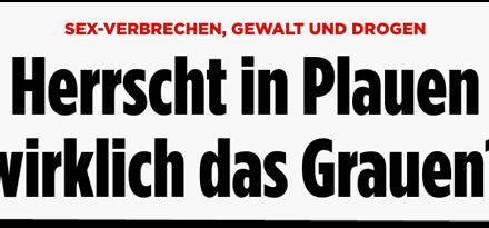 Bild.de verbreitet Vergewaltigungslüge