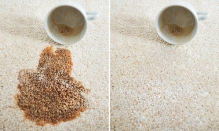 Pokud chcete mít opravdu dobře vyčištěný koberec, spolehněte se na strojové čištění