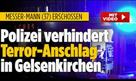 """Bild.de liefert """"Terror""""-Futter für Islamhasser und rechte Hetzer"""